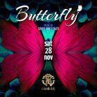 Saturday Night Fever in Dubai: december 19th 2015